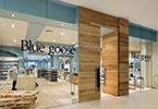bluegoose thumbnail